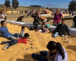 MACC Pumpkin Patch-11