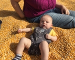 MACC Pumpkin Patch-9